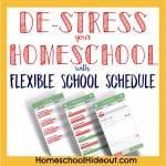 Who Needs a Flexible Homeschool Schedule? {Me!}