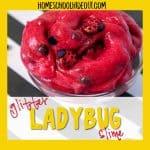 Quick & Easy DIY Ladybug Slime